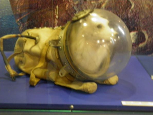 """Η Λάικα (στα Ρώσικα Лайка, """"Αυτή που γαβγίζει"""") ήταν μια σκυλίτσα που χρησιμοποιήθηκε στο Σοβιετικό Διαστημικό Πρόγραμμα. Στις 3 Νοέμβρη 1957, έγινε ο πρώτος ζωντανός οργανισμός που μπήκε σε τροχιά γύρω από τη Γη."""